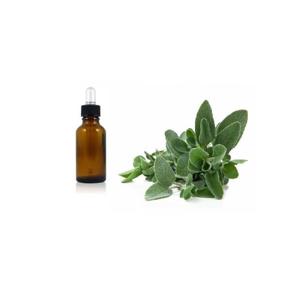 Salvia 10 ml