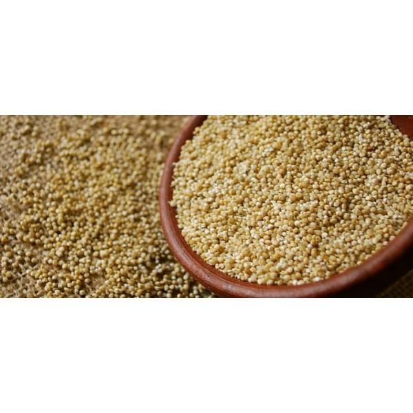 Quinoa bianca ITALIANA